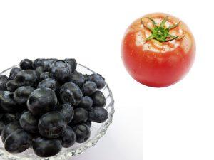 ブルーベリートマト